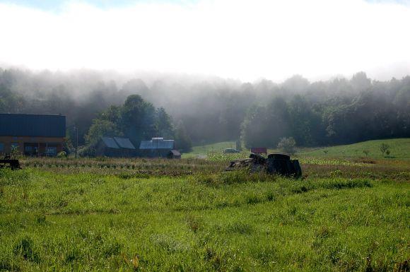 farm7